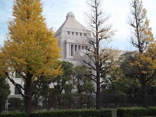 tokyo 006.JPG