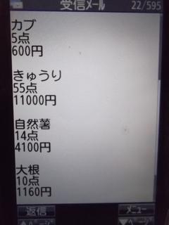 jikka 0.JPG
